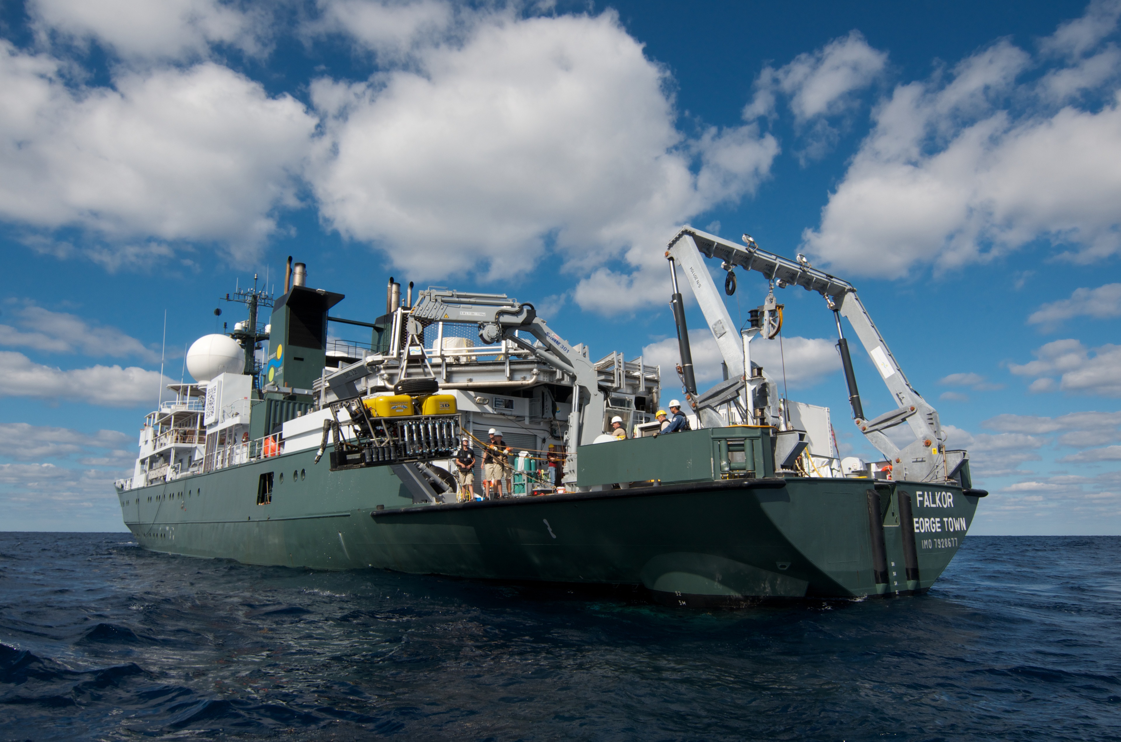 Nature Features Falkor And The Schmidt Ocean Institute