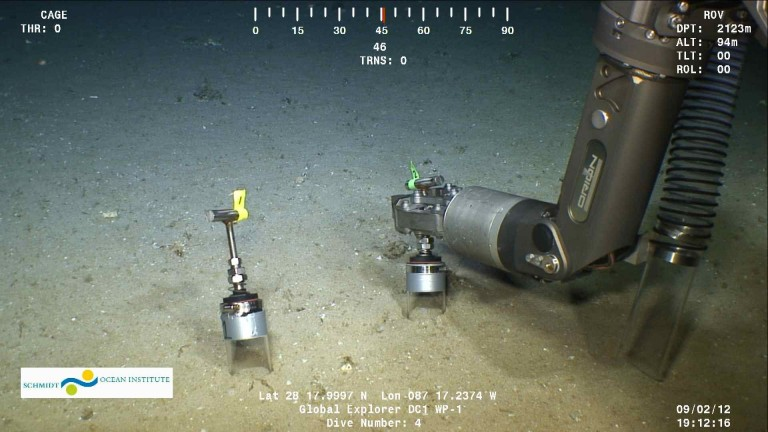 Push core samples were taken 5 meters from a coral site at De Soto Canyon.