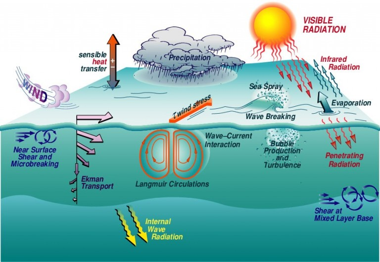 Various ocean-atmosphere processes at and below the ocean's surface.