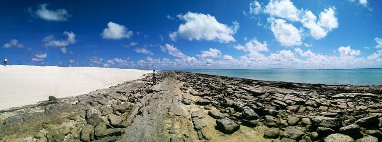 The impressive expanse of faulted and uplifted limestone stretching from the beach into the water.
