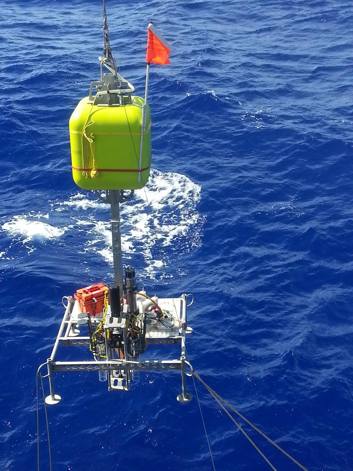 Exploring The Mariana Trench Schmidt Ocean Institute