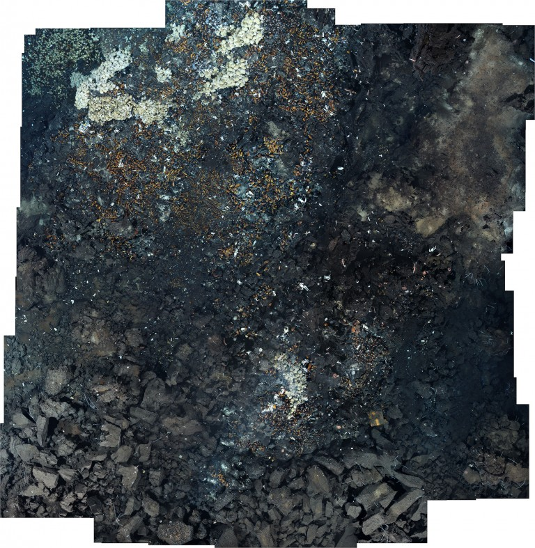 Photomosaics of TM1 site (Tu'i Malila vent field).