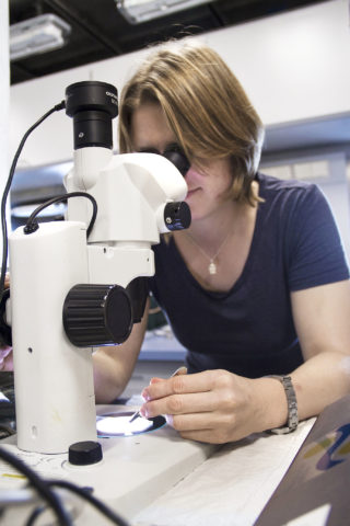 Janina Rahlff examines cocopod's specimens extracted from the sea surface microlayer samples collected by the catamaran.