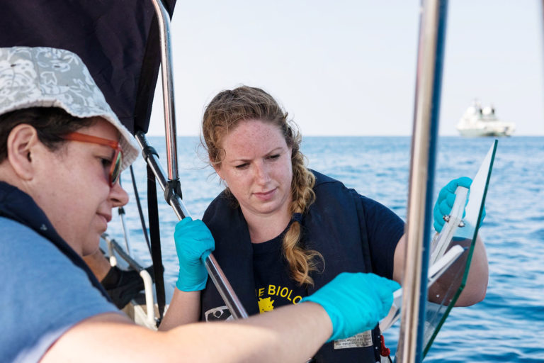 Kimberley Bird, PhD student at the University of East Anglia, collects sea surface microlayer samples using a glass plate. Microbial communities in the SML are distinct from those in the underlying water column. This unique and mostly invisible marine ecosystem controls the interactions between the atmosphere and the ocean.