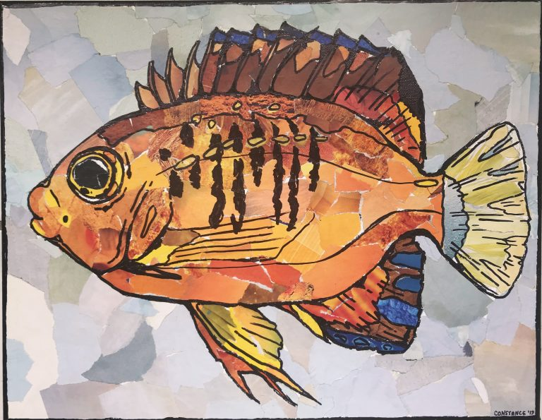 A picture of a collage art piece by Constance Sartor. The image depicts a bright orange fish with yellow caudal and pelvic fins, and a bright blue anal fin.