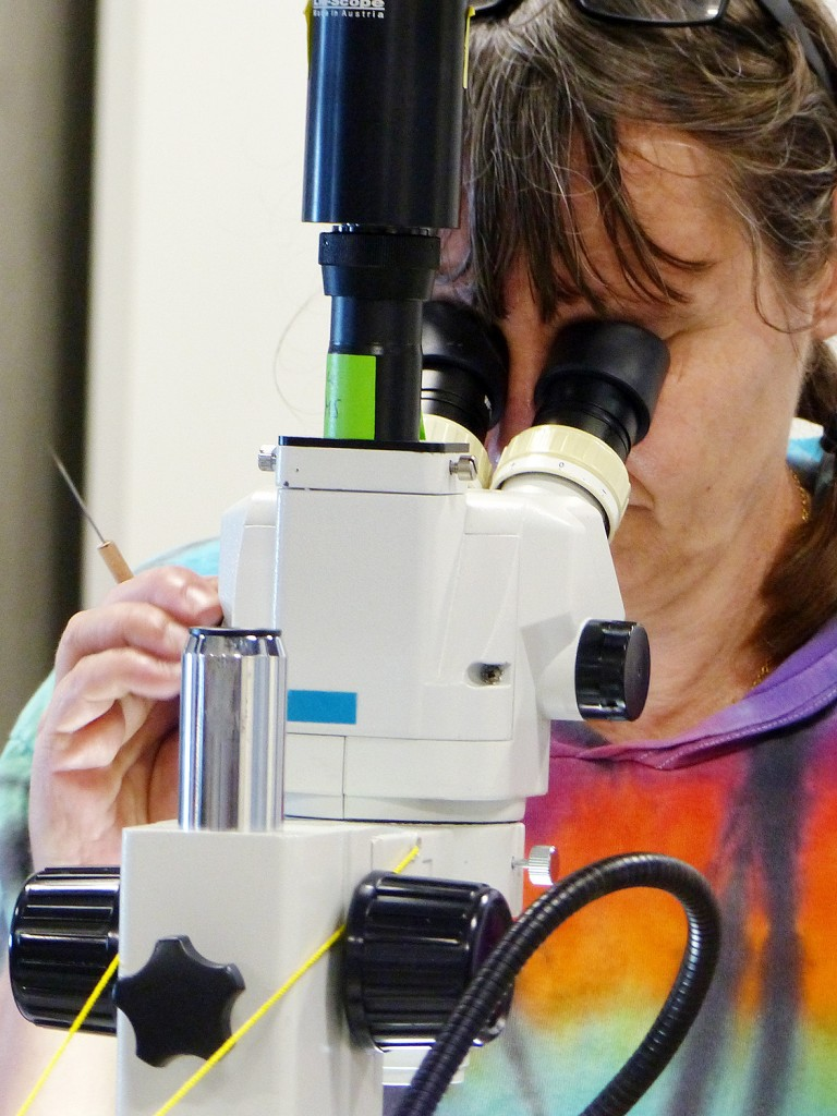 Blog author Monika Bright taking microscopic photographs of collection from the Vent Life expedition onboard the R/V Falkor.