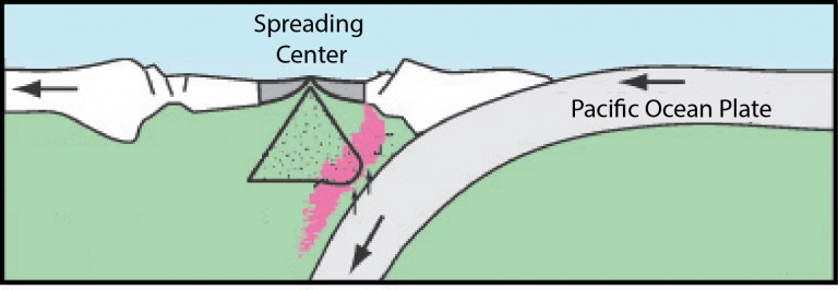 Schematic of the Lau Back-arc system showing the subduction zone and its influence on spreading centers.