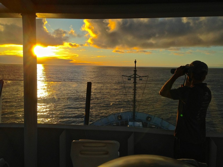 Daniel Luers, scanning for whales at sunset from Falkor's monkey deck.