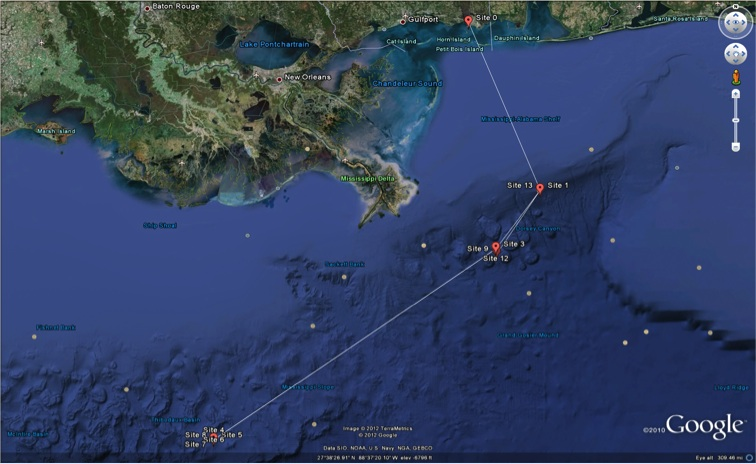 Researchers plan to visit the following study sites near the Deepwater Horizon oil spill aboard the R/V Falkor from 6 - 19 November 2012.