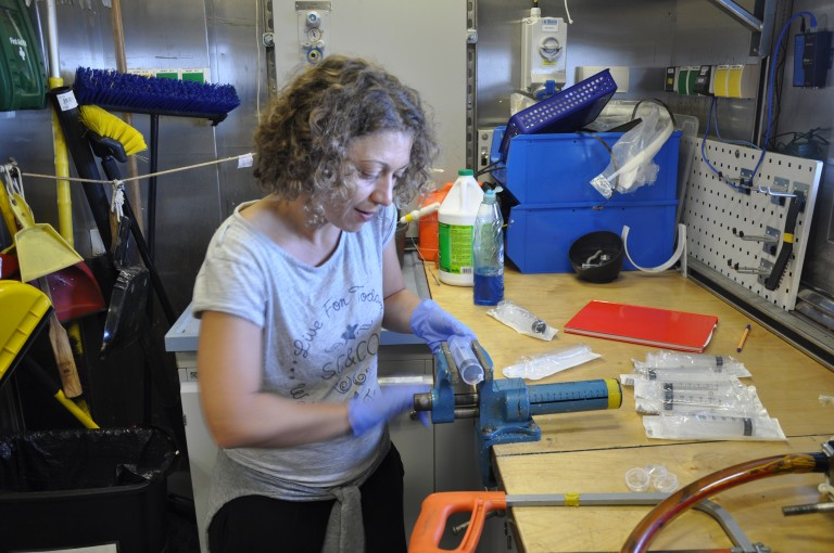 PhD Candidate Eleanna Grammatopoulou prepares mini cores to collect sediment samples from the rockgrabbers.