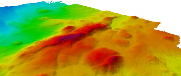 High resolution multibeam map of the newly named Engineer's Ridge.