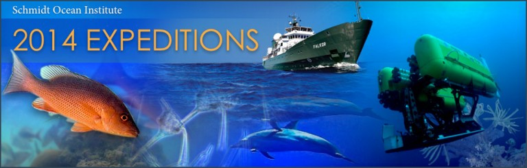 2014 Expeditions Image