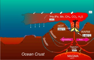 Graphic of a vent at a spreading center forming a hydrothermal plume (not to scale). Seawater penetrating cracks in the crust is heated by magma several kilometers deep. The heated seawater carries chemicals from the magma and the crustal rocks to the ocean. The discharging fluids are diluted by seawater, rise a few hundred meters, and are dispersed laterally by local currents.