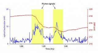 Plot of MAPR data showing the signals indicative of a hydrothermal plume.