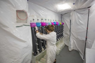 Susanna Michael tends the Go-Flo bottles in the bubble.