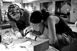 Scientists on board perform a snailfish dissection.