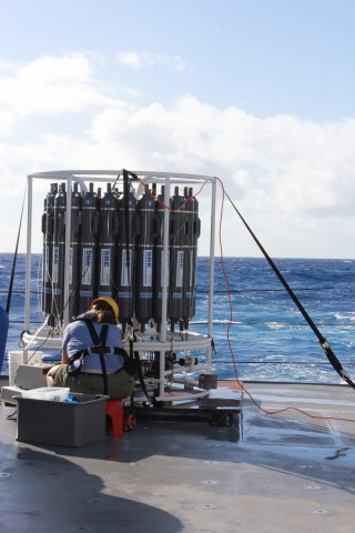 Karen Selph collecting water from the 24 (10L) botttles on the CTD-Rosette for microzooplankton incubation experiments.