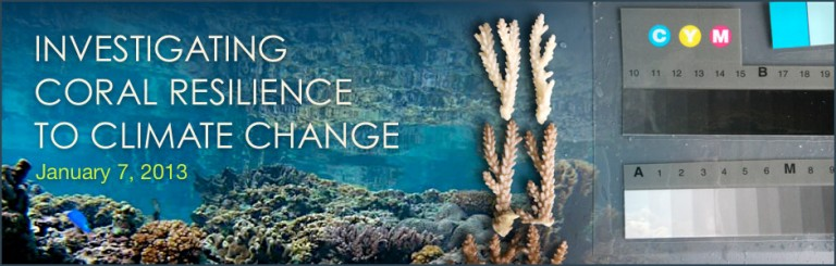 Investigating Coral Resilience to Climate Change banner.