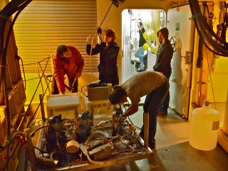 Processing the last sample from the last ROV dive.