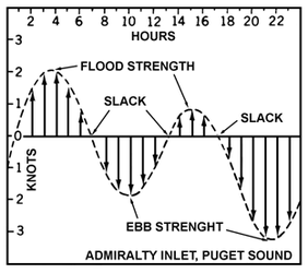 Plot showing the velocity sine wave of a tidal cycle.