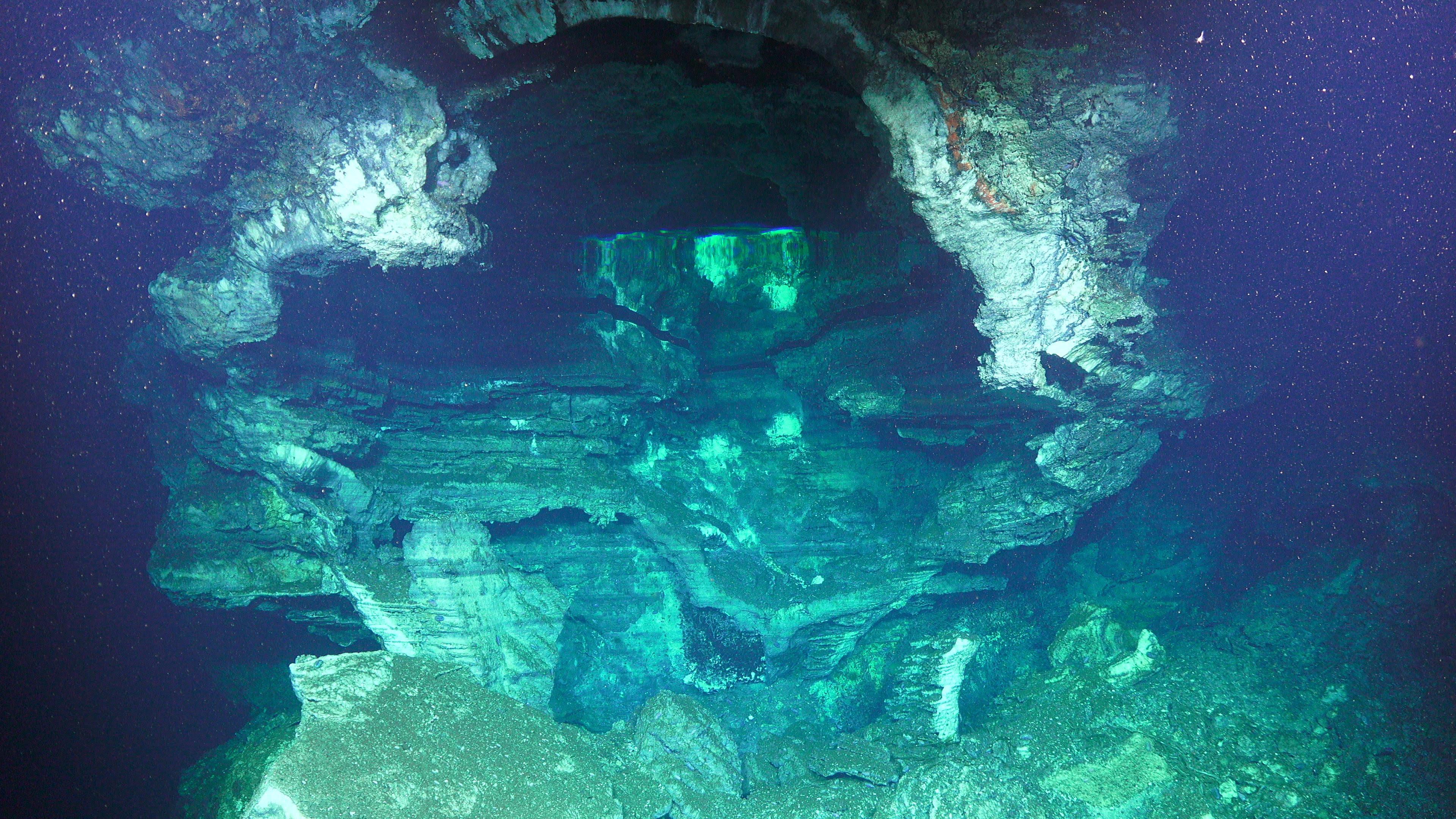 It 39 s a wrap new discoveries and new questions schmidt ocean institute - Fotos fondo del mar ...